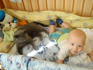 kočka a dítě