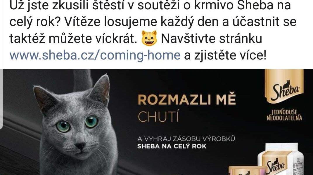 PANÍ  Ali Zemanka  PRO NAŠE SLUNÍČKA VYHRÁLA V SOUTĚŽI S She...