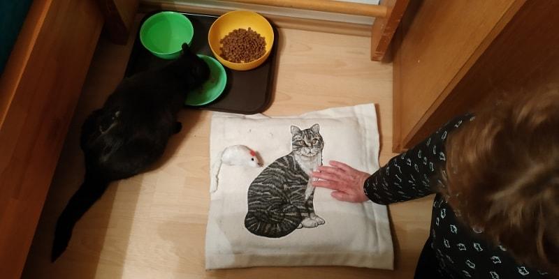 Manželky černá kočička