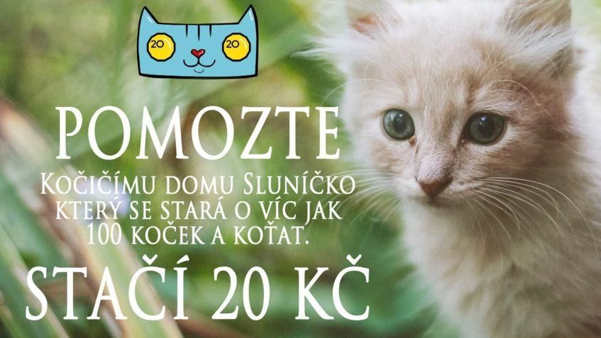 DĚKUJEME MOC ZA ZAŘAZENÍ KOČIČÍHO DOMOVA SLUNÍČKO Z.S  do sk...