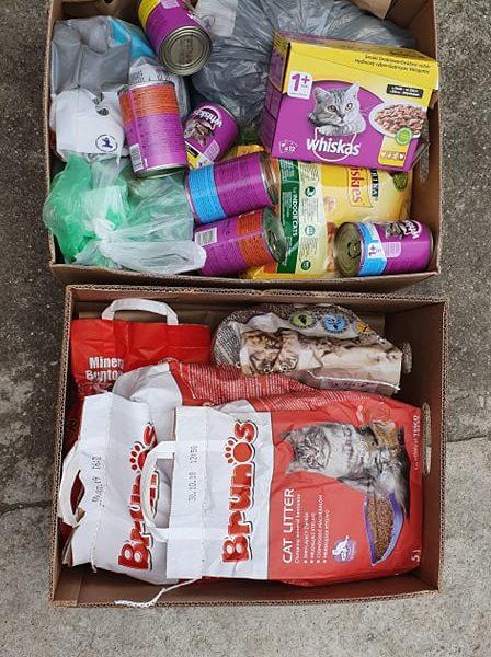 Děkujeme za dar pro kočičky od Tesco Letňany...