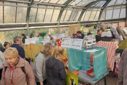 Přijďte se za námi podívat na umísťovací výstavu do Botanick...
