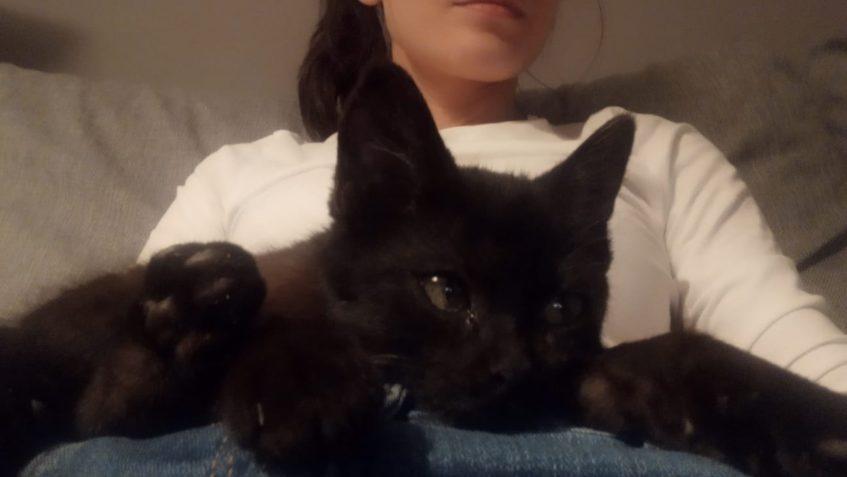 Malá  Lenon posílá první pozdrav z nového domova...