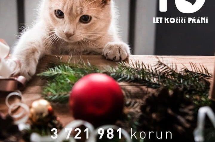 Letošní vánoční Kočičí přání trhalo rekordy!...
