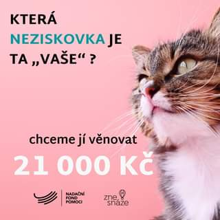 """Může jít o obrázek cat a text that says 'KTERÁ NEZISKOVKA JE ΤΑ """"VAŠE""""? chceme jí venovat 21 000 KČ NADAČNÍ FOND POMOCI zne snaze'"""