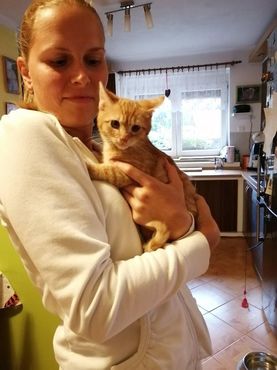 Dnes odjela do svých nových domovů 3 koťátka...Zrz...